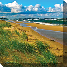 24x24 Windy Beach Outdoor Canvas Wall Art