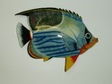 15in Saddleback Fish Wall Decor